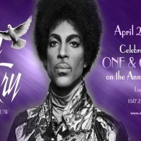 Celebrating the Life of Prince