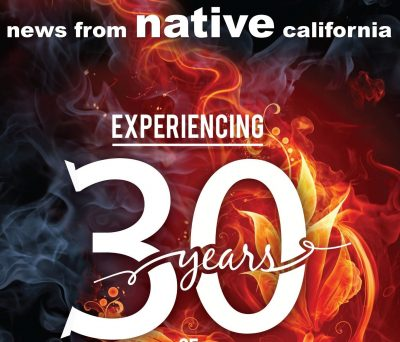 """Exhibit """"News from Native California: 30 Years of ..."""