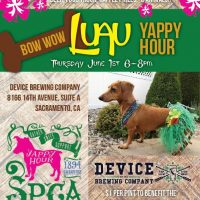Bow Wow Luau Yappy Hour