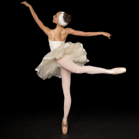 Capitol Ballet's Spring Performance