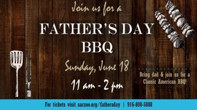 Father's Day BBQ at the Zoo