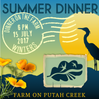 Summer Dinner on the Farm