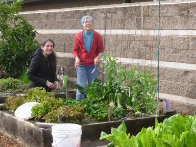 UCCE Master Gardeners of Sacramento County's Harvest Day 2017