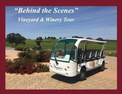 Naggiar Vineyards and Winery Behind the Scenes Tour