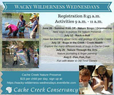 Wacky Wilderness Days at the Cache Creek Nature Preserve