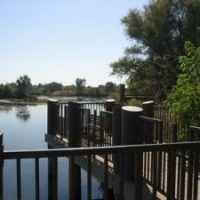 American River Parkway - William Pond Recreation A...