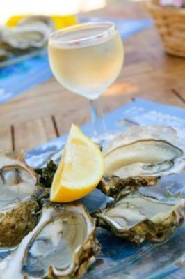 Wine and Food Pairings at Viaggio Estate and Winery