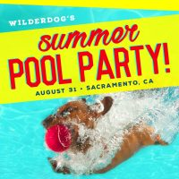 Wilderdog's End of Summer Dog Pool Party