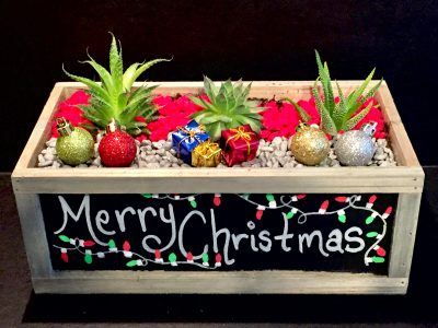 Merry Christmas Chalkboard Customizable Planter Plant Nite
