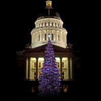 California State Capitol Christmas Tree Lighting Ceremony