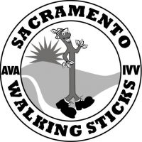 Walk in the New Year with the Sacramento Walking S...