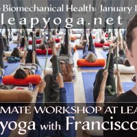 Leap Yoga: The Ultimate Kaiut Yoga Workshop with F...
