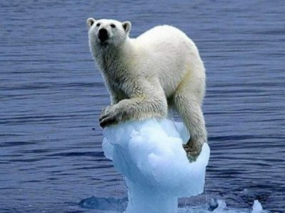 Climate Change and the Six Delusions Discussion