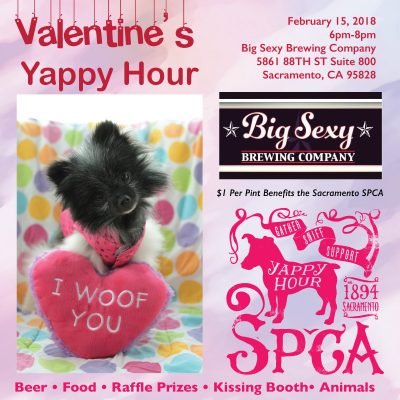 Valentine's Yappy Hour at Big Sexy Brewing Co.