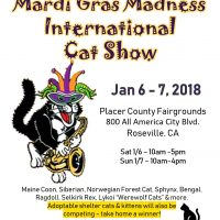 International Cat Show and Pet Food Drive