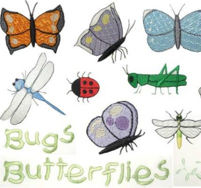 Critters that Crawl and Fly