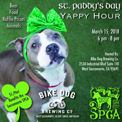 St. Paddy's Day Yappy Hour