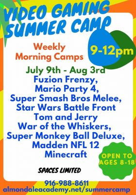 Video Gaming Summer Camp