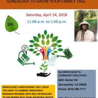 Genealogy to Grow Your Family Tree