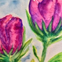 Florals in Watercolor