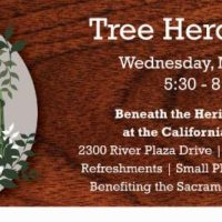 Tree Hero Awards