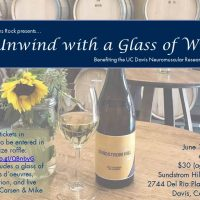 Unwind with a Glass of Wine Fundraiser