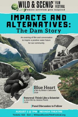 Impacts and Alternatives: A Dam Story