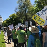 March for Science: Sacramento Benefit Show and Auction