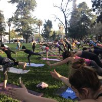 MiYo: Yoga in the Park