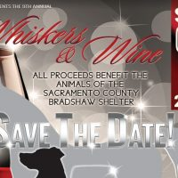 Whiskers and Wine Fundraiser