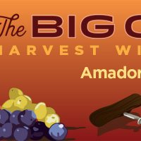 The Big Crush Harvest Wine Festival 2018