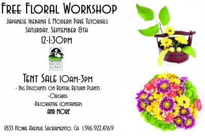 Japanese Ikebana and Modern Pave Floral Workshop