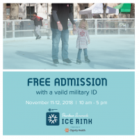 Veterans Day at the Downtown Sacramento Ice Rink