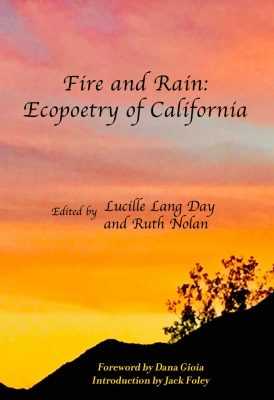 Poetry Reading Series: Fire and Rain