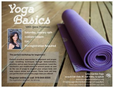 Yoga Basics Workshop