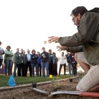 Learn and Shop Class: Shape and Texture for Garden Impact