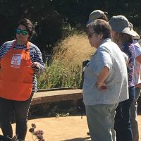 Learn and Shop Class: Make Your Garden Pop for Pollinators