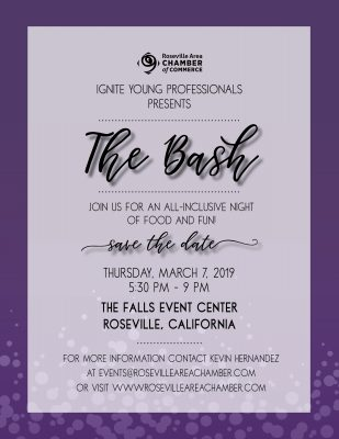 IGNITE Young Professional's Presents: The Bash 2019