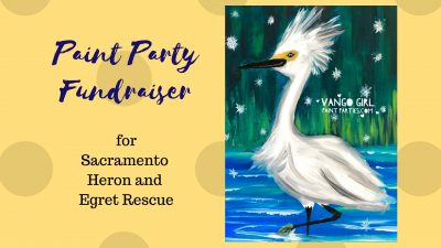 Paint Party Fundraiser for Wildlife