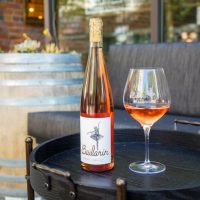 Rosé All Day at Bailarín Cellars