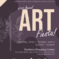 61st Annual Art Fiesta!