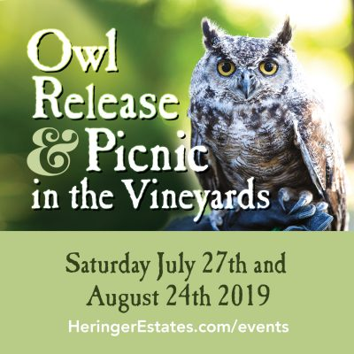 Heringer Estates Owl Release and Picnic in the Vineyards