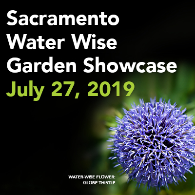 Sacramento Water Wise Garden Showcase