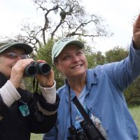 100 Birds of the American River Parkway