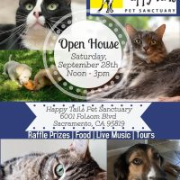 Happy Tails Open House