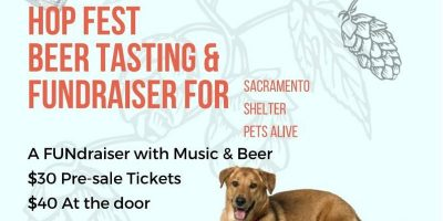 Hop Fest Beer Tasting and Fundraiser