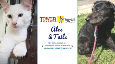 Ales and Tails
