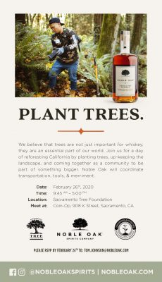 Tree Planting with Noble Oak