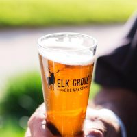 Elk Grove Brewfest (Postponed)