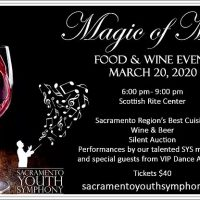 Magic of Music Silent Auction